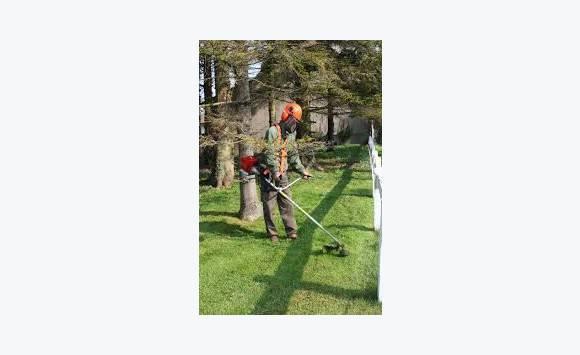 Espace vert annonce demande emploi saint martin for Travail espace vert