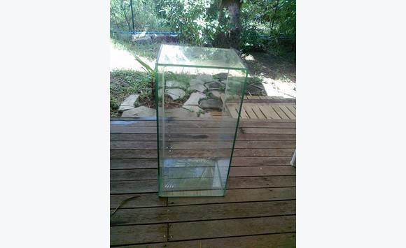 small aquarium - Classified ad - Other Animals Saint Martin