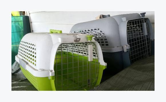 caisse transport pour animaux norme avion annonce autres animaux hope estate saint martin. Black Bedroom Furniture Sets. Home Design Ideas