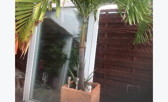 panneau vitr annonce vide maison cul de sac saint martin. Black Bedroom Furniture Sets. Home Design Ideas