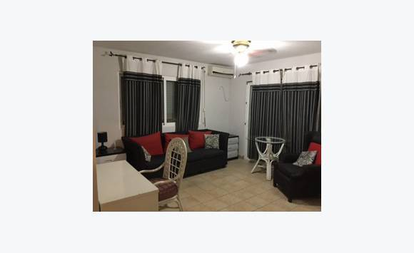 Furnished Apartment 1 Bedroom Classified Ad Rentals