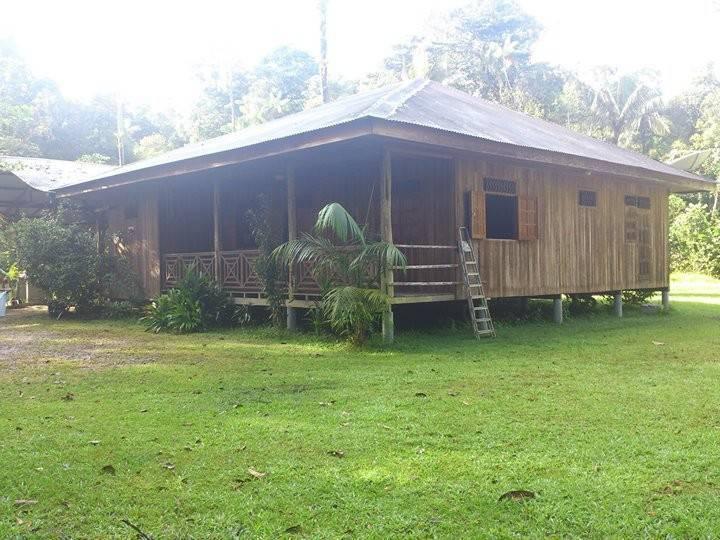 Maison en bois  Annonce  Ventes Maison Guyane