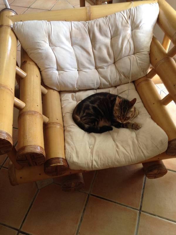 fauteuil gros bambou meubles et d coration saint martin. Black Bedroom Furniture Sets. Home Design Ideas
