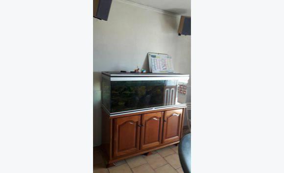 aquarium 1m50 avec accessoires annonce meubles et d coration grand 39 rivi re martinique. Black Bedroom Furniture Sets. Home Design Ideas