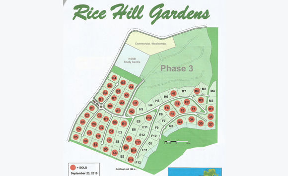 Superficie de riz Hill Gardens E13