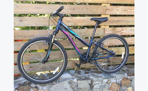 Mountain bike 24 inch