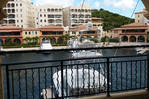 MAGNIFICENT 2 BR CONDO ON THE MARINA PORTOCUPECOY