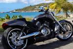 Harley Davidson échange possible