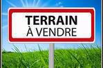 A Macouria Un Terrain Agricole De 4586...